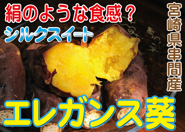 2017.10エレガンス葵