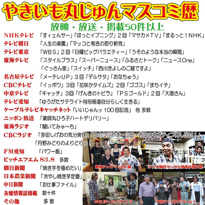 丸じゅんマスコミ歴原画1